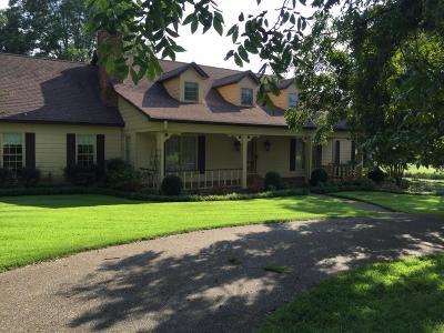 Hernando Single Family Home For Sale: 3929 Highway 304