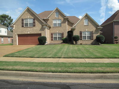 Olive Branch Single Family Home For Sale: 9336 Gee Gee Drive