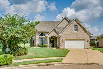 Olive Branch Single Family Home For Sale: 5254 Nail