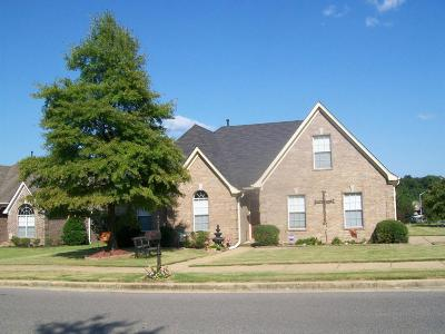 Olive Branch Single Family Home For Sale: 7160 Maple Grove Road