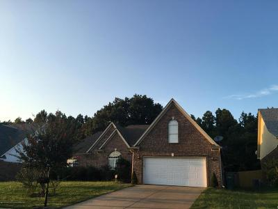 Southaven Single Family Home For Sale: 2552 Pyramid