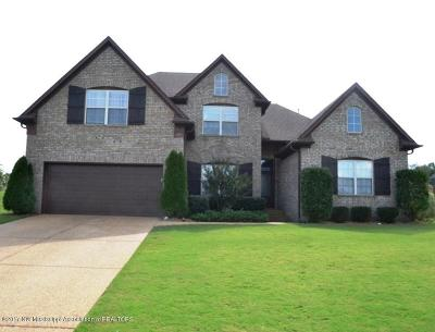 Olive Branch Single Family Home For Sale: 6053 Coleman Road