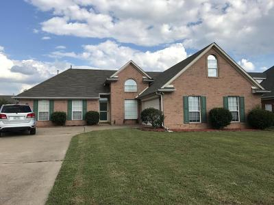 Olive Branch Single Family Home For Sale: 5670 Stone Street