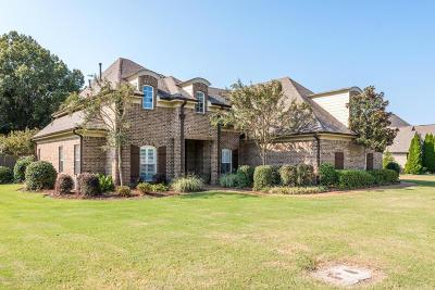 Hernando MS Single Family Home For Sale: $321,000