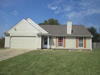Horn Lake Single Family Home For Sale: 7377 Mallard Creek