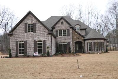 Desoto County Single Family Home For Sale: 3385 W Long Bridge Road