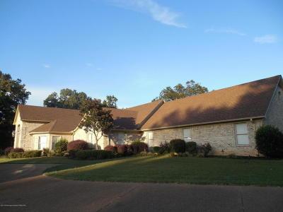 Desoto County Single Family Home For Sale: 3122 Bridgemoore Drive