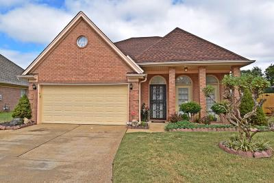 Olive Branch Single Family Home For Sale: 9822 Morgan Meadows Cove