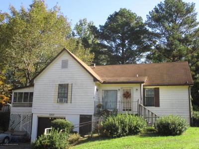 Hernando Single Family Home For Sale: 1262 N Thunderbird Drive