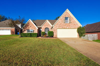 Olive Branch Single Family Home For Sale: 6073 S Shadow Oaks Cove