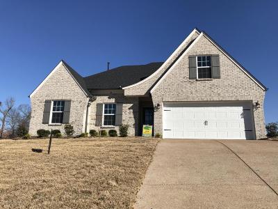 Desoto County Single Family Home For Sale: 24 Magnolia Gardens Drive