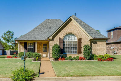 Southaven Single Family Home For Sale: 5939 Snowden Run