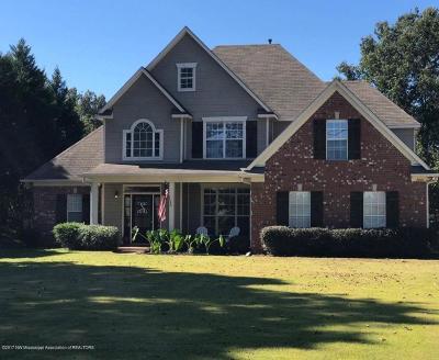 Hernando MS Single Family Home For Sale: $252,900