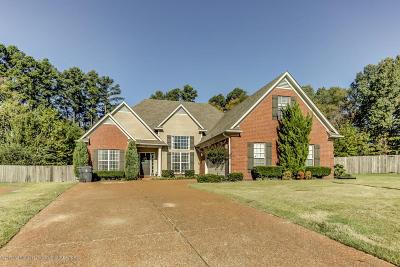 Hernando Single Family Home For Sale: 430 Calloway Cove
