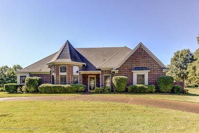 Olive Branch Single Family Home For Sale: 4605 Rebekah Drive