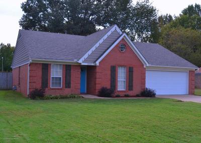 Walls Single Family Home For Sale: 6943 Fox Briar Cove
