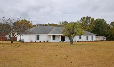 Desoto County Single Family Home For Sale: 1435 Byhalia Road