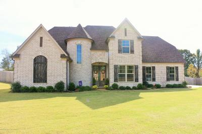 Desoto County Single Family Home For Sale: 1749 Marcia Louise Drive