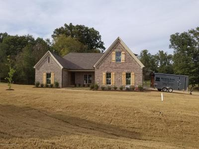 Desoto County Single Family Home For Sale: 14202 Peachtree Cove