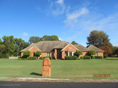 Olive Branch Single Family Home For Sale: 4480 Mary Jane