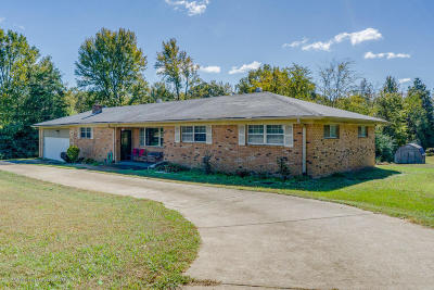Byhalia Single Family Home For Sale: 149 Scenic Drive