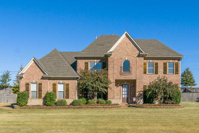 Olive Branch Single Family Home For Sale: 8346 Whites Crossing Drive