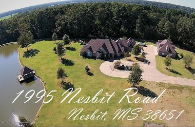 Desoto County Single Family Home For Sale: 1995 Nesbit Road