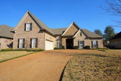 Southaven Single Family Home For Sale: 3370 Mountain Ash Drive