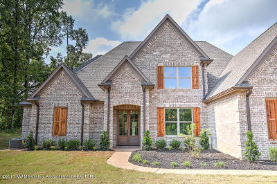 Olive Branch Single Family Home For Sale: 10580 Long Bridge Road