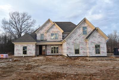 Hernando Single Family Home For Sale: 3646 Flat Rock Drive