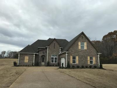 Southaven Single Family Home For Sale: 2279 Shenna Cove
