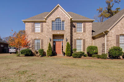 Southaven Single Family Home For Sale: 6930 Tanner's Way Cv