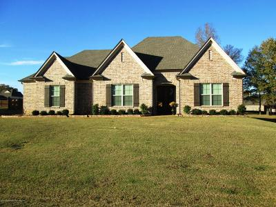 Olive Branch Single Family Home For Sale: 14330 Chapel Ridge
