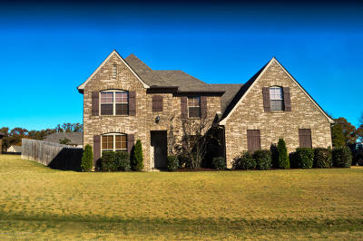 Olive Branch Single Family Home For Sale: 14370 Chapel Ridge