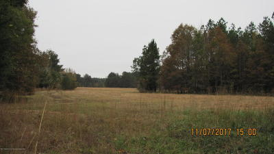 Residential Lots & Land For Sale: 934 Puppy Hill Road