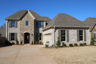 Southaven Single Family Home For Sale: 3517 Enclave Drive