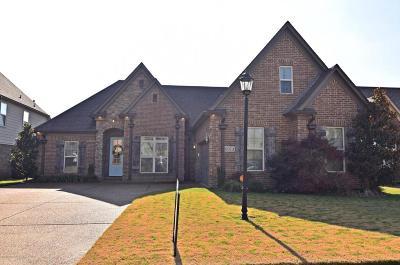 Olive Branch Single Family Home For Sale: 6973 N Dakota