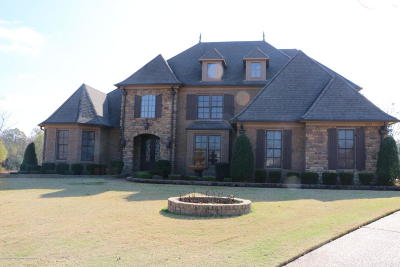 Desoto County Single Family Home For Sale: 6382 Cody Cove