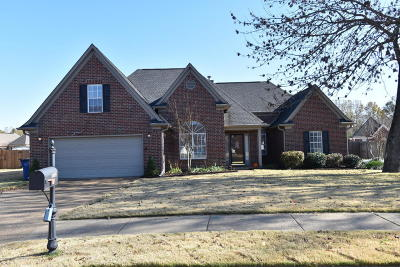 Olive Branch Single Family Home For Sale: 6684 Crystal Drive