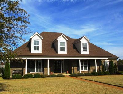 Olive Branch Single Family Home For Sale: 5050 Wethersfield Boulevard