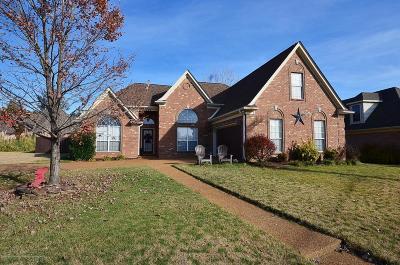 Hernando Single Family Home For Sale: 860 Tara Drive