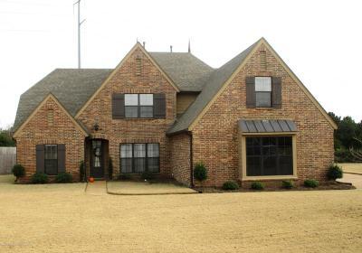 Olive Branch Single Family Home For Sale: 3608 E Mitchells Corner Road