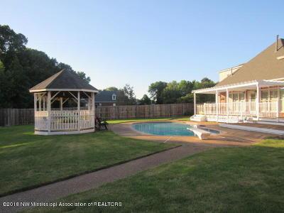 Desoto County Single Family Home For Sale: 8083 Windersgate Drive