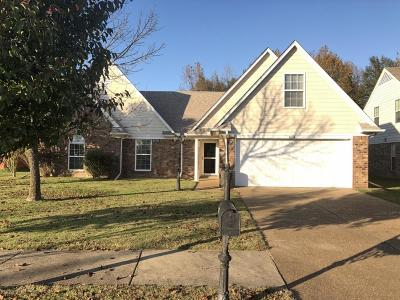 Walls Single Family Home For Sale: 8214 Delta Lakes