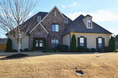 Desoto County Single Family Home For Sale: 6764 Clarmore Drive