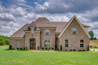 Desoto County Single Family Home For Sale: 1678 Shepherd Cove