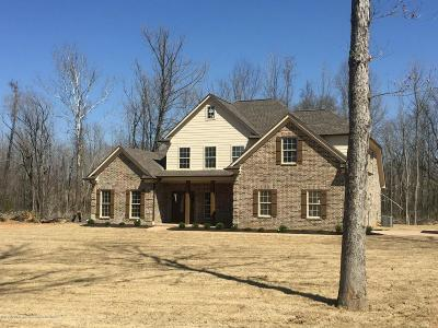 Desoto County Single Family Home For Sale: 5370 Bent