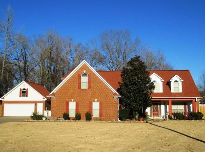 Desoto County Single Family Home For Sale: 8740 Catherine Cove