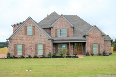 Desoto County Single Family Home For Sale: 3555 Anna Drive