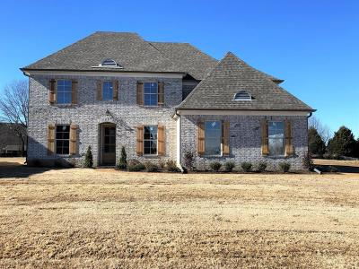 Desoto County Single Family Home For Sale: 3705 Beech Tree Cove
